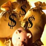 Успешный бизнес на выращивании и разведении свиней